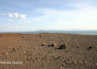 Le lac Turkana, plus grand lac de désert du monde