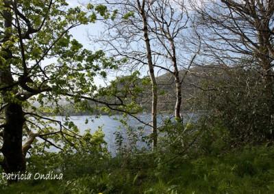 Région des Trossachs, magie des Lochs