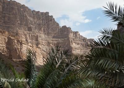 Wadi Guhl
