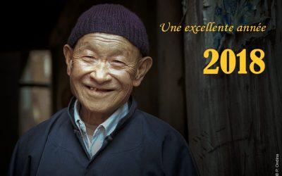 Bonne année du Chien !